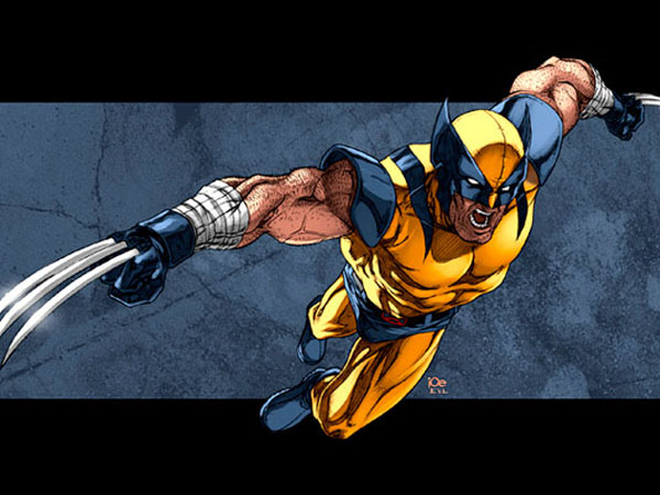 Sa Wolverine a búrka pripojiť